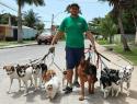Xeno Consultor De Cães-Porto Seguro - Imagem1