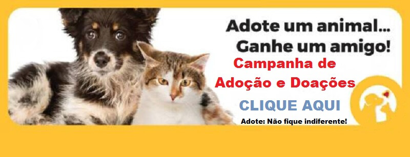 Banner adote um animal, ganhe um amigo campanha de adoção e doações em Porto Seguro clique Aqui