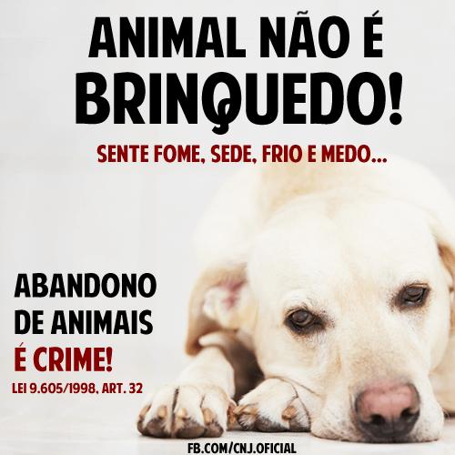 animal não é brinquedo sente fome sede frio e medo abandono de animais é crime lei 9.605/1998 ART.32